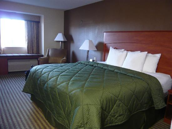 Comfort Inn Portland: Comfortable bed and pillows