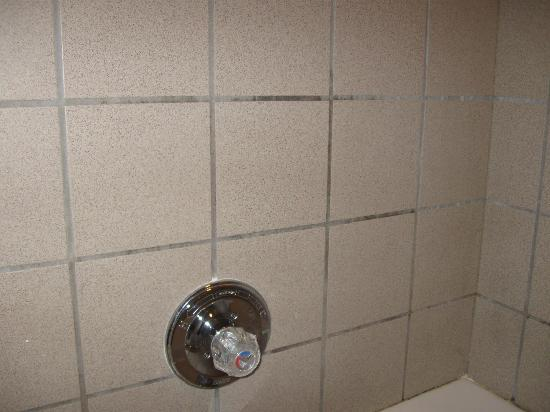 Baymont Inn & Suites Cave City: dirty/mildew grout