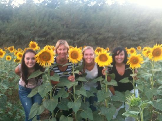 Fun in Tuscany: Second Stop - Sunflower Fields