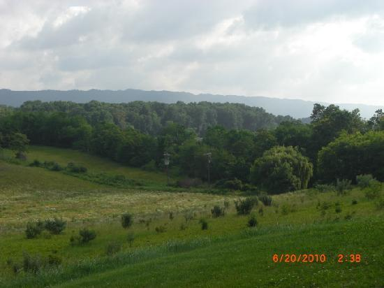Hampton Inn Wytheville: View from the outdoor patio