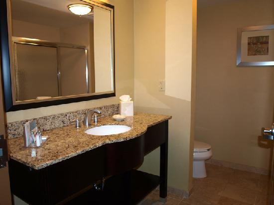 Hampton Inn & Suites Jacksonville South - Bartram Park: Bad