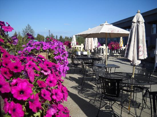 Regency Fairbanks Hotel: Great Patio in Summer - Useless in Winter