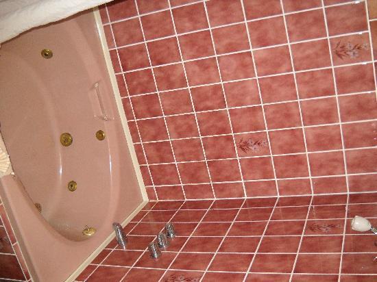 ريجنسي فيربانكس هوتل: Big Garden Tub, Decent Shower, Smallish Bathroom