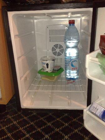 Sun City Hotel: Kühlschrankgrösse!!!