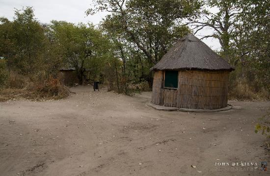 Photo of Kaziikini Campsite Moremi Game Reserve