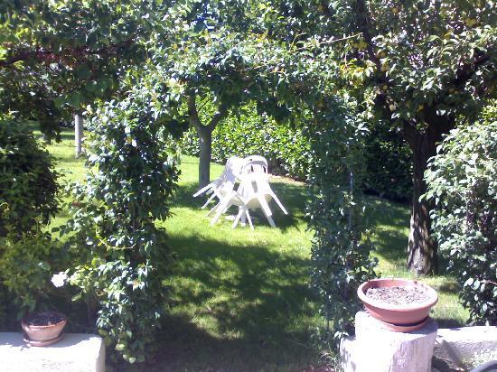 dettaglio nel giardino del B&B Laura