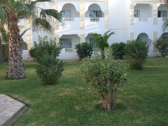 Hotel Cedriana: Végetation luxuriante