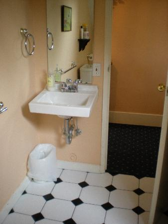 Windsor Guest House: Shared restroom