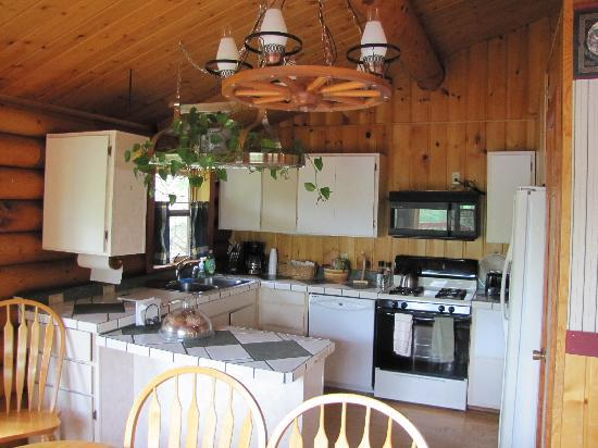 Alaska Serenity Lodge: kitchen