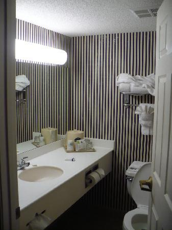 Country Inn & Suites Wolfchase - Memphis: Clean Bathroom with lots of light