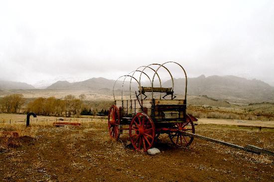 Margo's Mountain Suite: Wagon