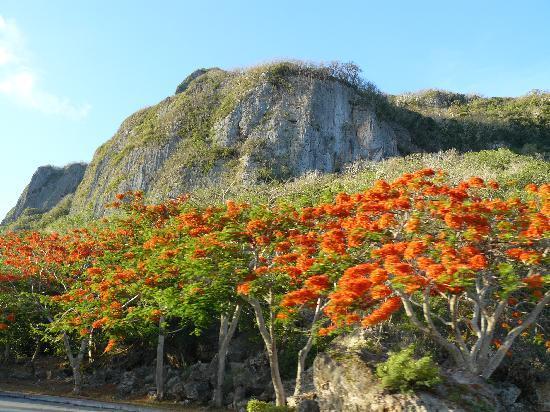 Saipan, Mariana Islands: suicide cliff