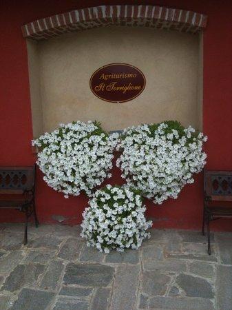 La Morra, Italia: Ingresso fiorito dell'Agriturismo Il Torriglione