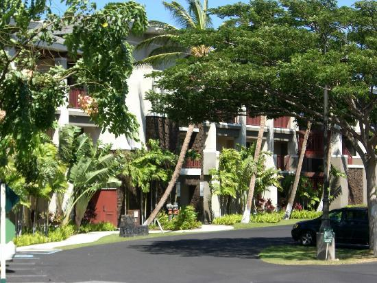 Kohala Suites by Hilton Grand Vacations: 心地よい風が吹きぬけます