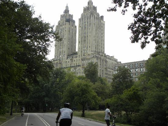 Central Park Tours: Riding bikes through Central Park and seeing famous buildings nearby.