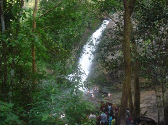 Bethel Homestay, Kalpetta, : Suchippara Water Falls