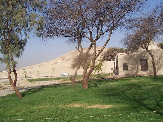 Howard Carter House : Cool & peaceful as the VOK coaches rush past.