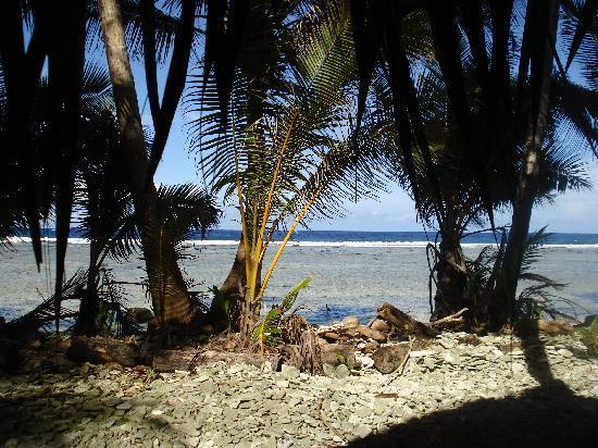 Kosrae Village Ecolodge & Dive Resort: Blick aus der Hütte