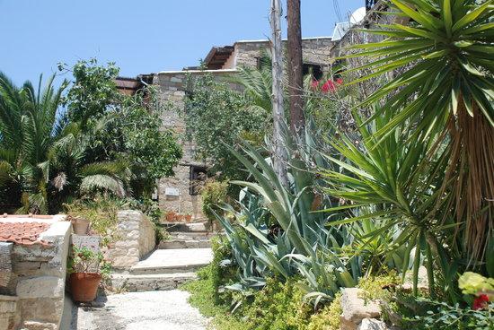 Cyprus Villages: une des petites rues du village