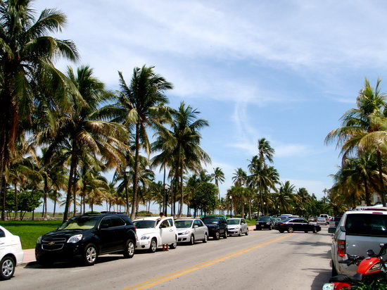 Best Miami Beach Restaurants Ocean Drive
