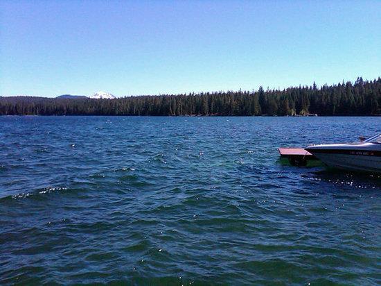 Cultus lake resort lodge reviews bend or tripadvisor for Cabins at cultus lake