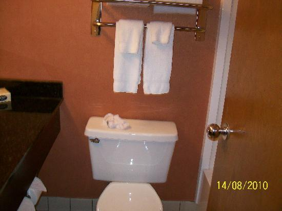 University Plaza Hotel and Convention Center: Bathroom!