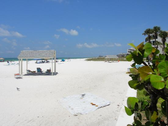 The Casa Blanca: Siesta Key beach