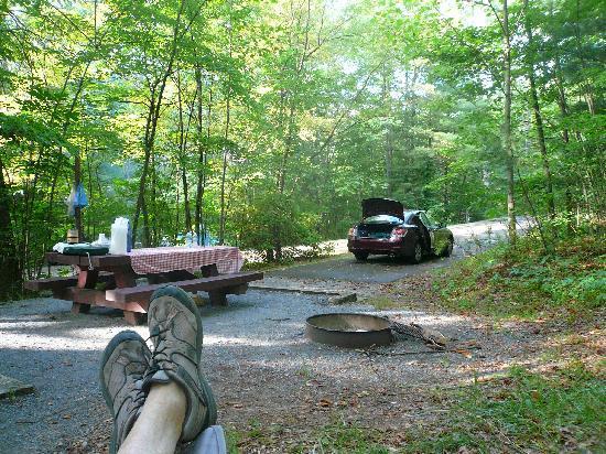 Seneca Shadows: campsite