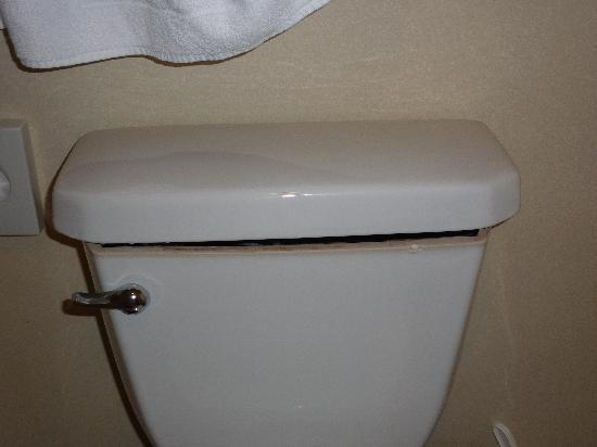 Hotel Riu Palace Aruba: Toilet with the wrong lid!