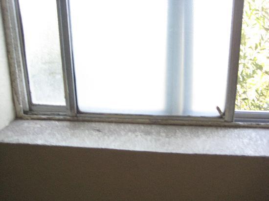 Desert Rancho Motel : The dirt on the window ledge.