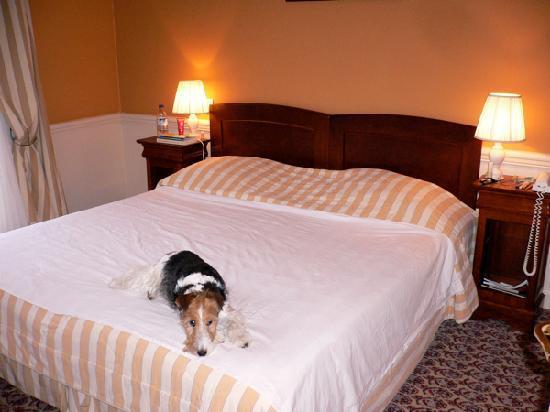 Hotel Barriere Le Grand Hotel: La chambre
