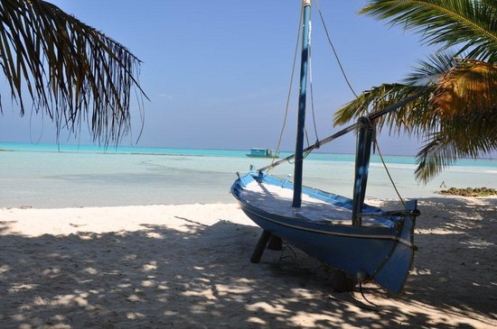 Meeru Island Resort & Spa: vue de l'île