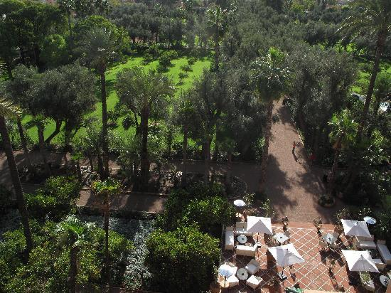 La Mamounia Marrakech: The View from our Terrace