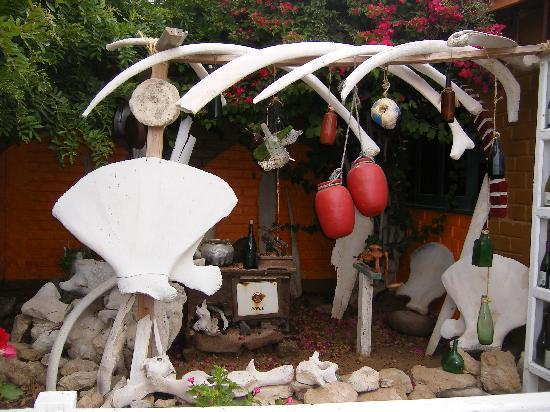 Guerrero Negro, المكسيك: Creative decorative corner in the garden