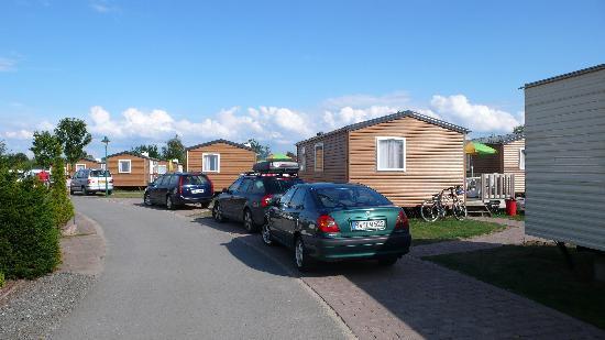 Suedsee-Camp: Eurocamp vans at Sudsee Camp