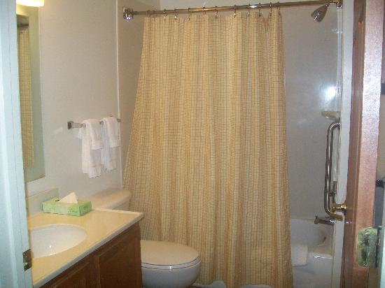 TownePlace Suites Charlotte Arrowood: Bathroom