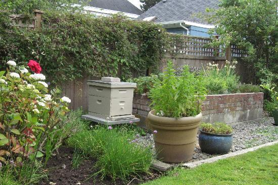 Spinnakers Brewpub and Guesthouses: Beehive and Herb Garden