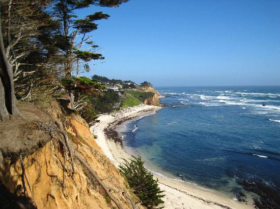 Seal Cove Inn: most beautiful view of the coastline just a short walk away