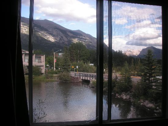 Bow Valley Motel : View from bedroom window