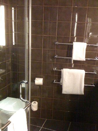 The Hoxton, Shoreditch : the bathroom was AWESOME.  best shower EVER.
