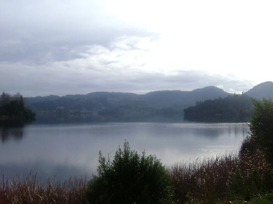 Lyons Lakestay: lake okareka (right outside our front door)