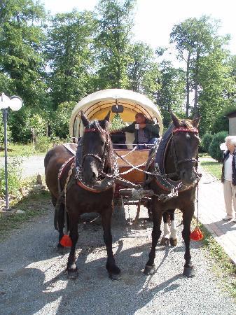 Kutschenfahrt Harzer Land