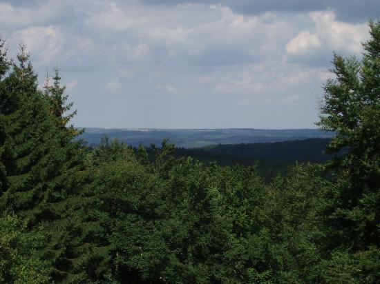 Harzer Land: Blick zum Brocken