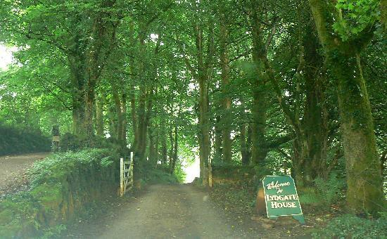 entrance via small lane to Lydgate House