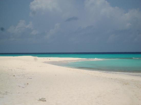 Posada Movida: ....spiagge affollate