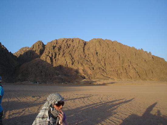 The Royal Savoy Sharm El Sheikh: quad bikes in desert good trip