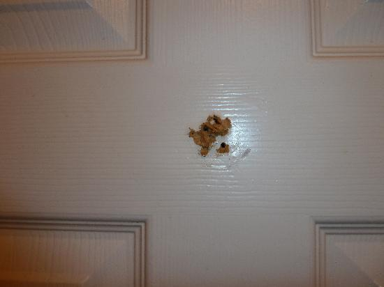 Killarney Oaks Hotel: bathroom door didn't shut  & hole in door