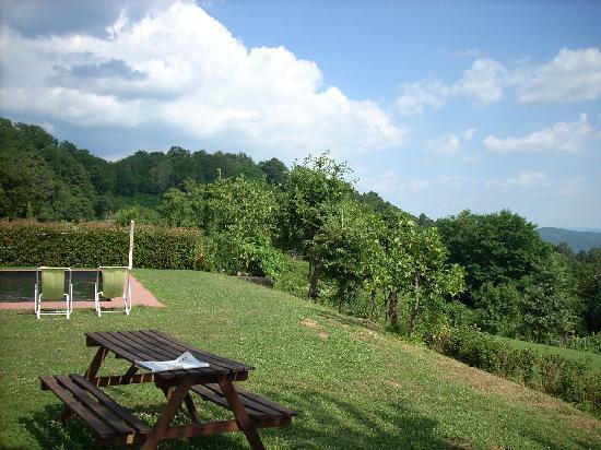Agriturismo Braccicorti: la piscina tra i boschi
