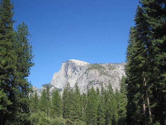 Yosemite Ridge Resort: Destination - Yosemite Valley - Half Dome