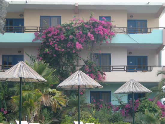 Area Blue Beach Hotel : Hotel